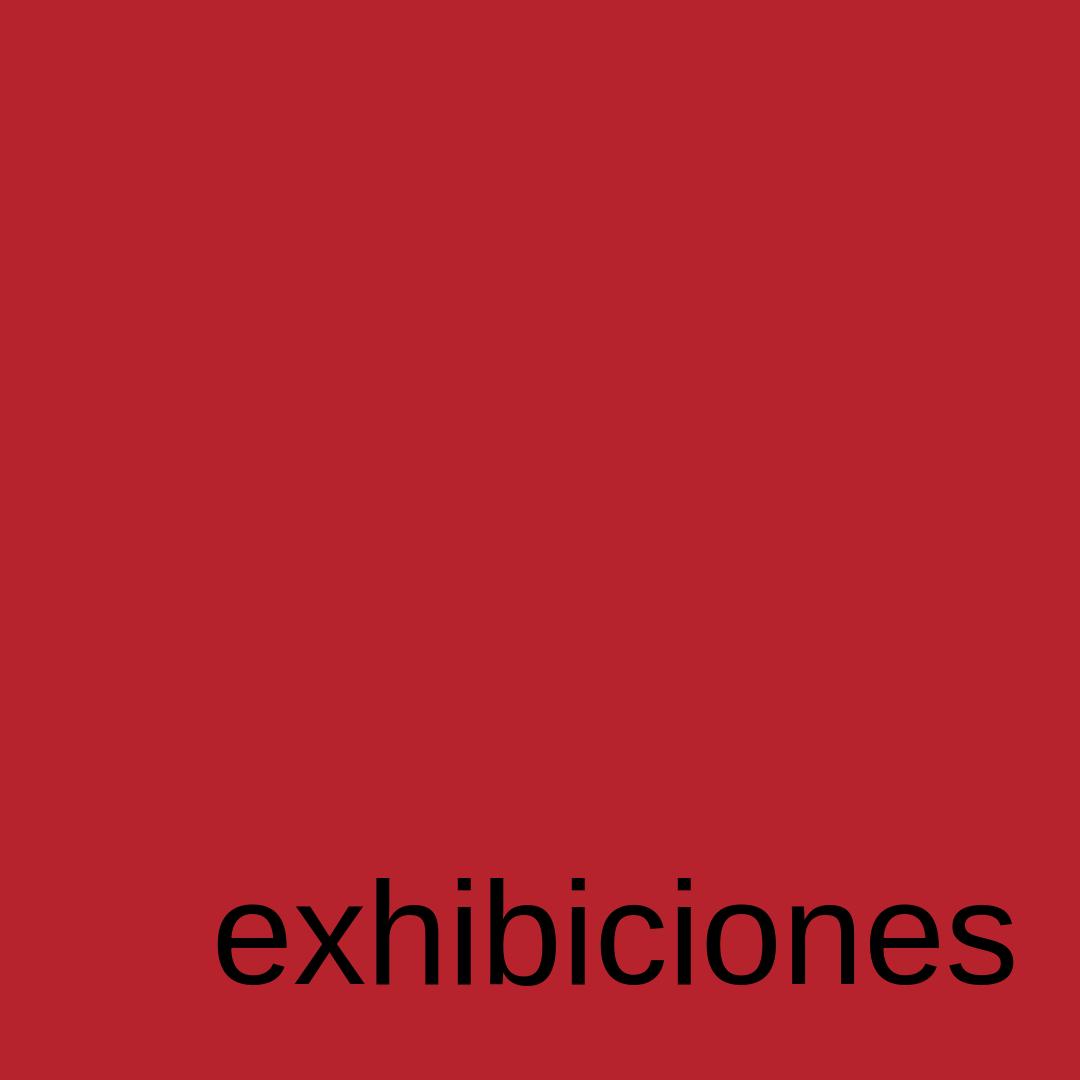 exhibiciones plaroig barcelona